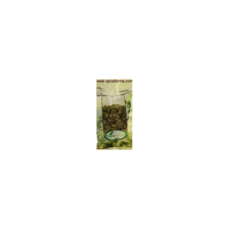 Llanten bolsa 40 gr Soria Natural
