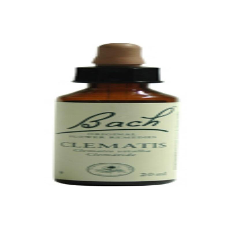 Clematis - Clematide Flores de Bach